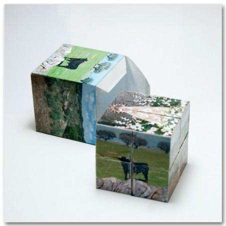 Customized cube.